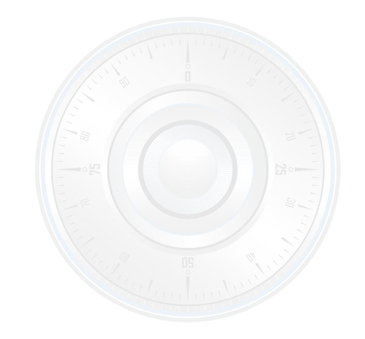 SafetyFirst RVS Sleutelkluis - Euro profielcilinder